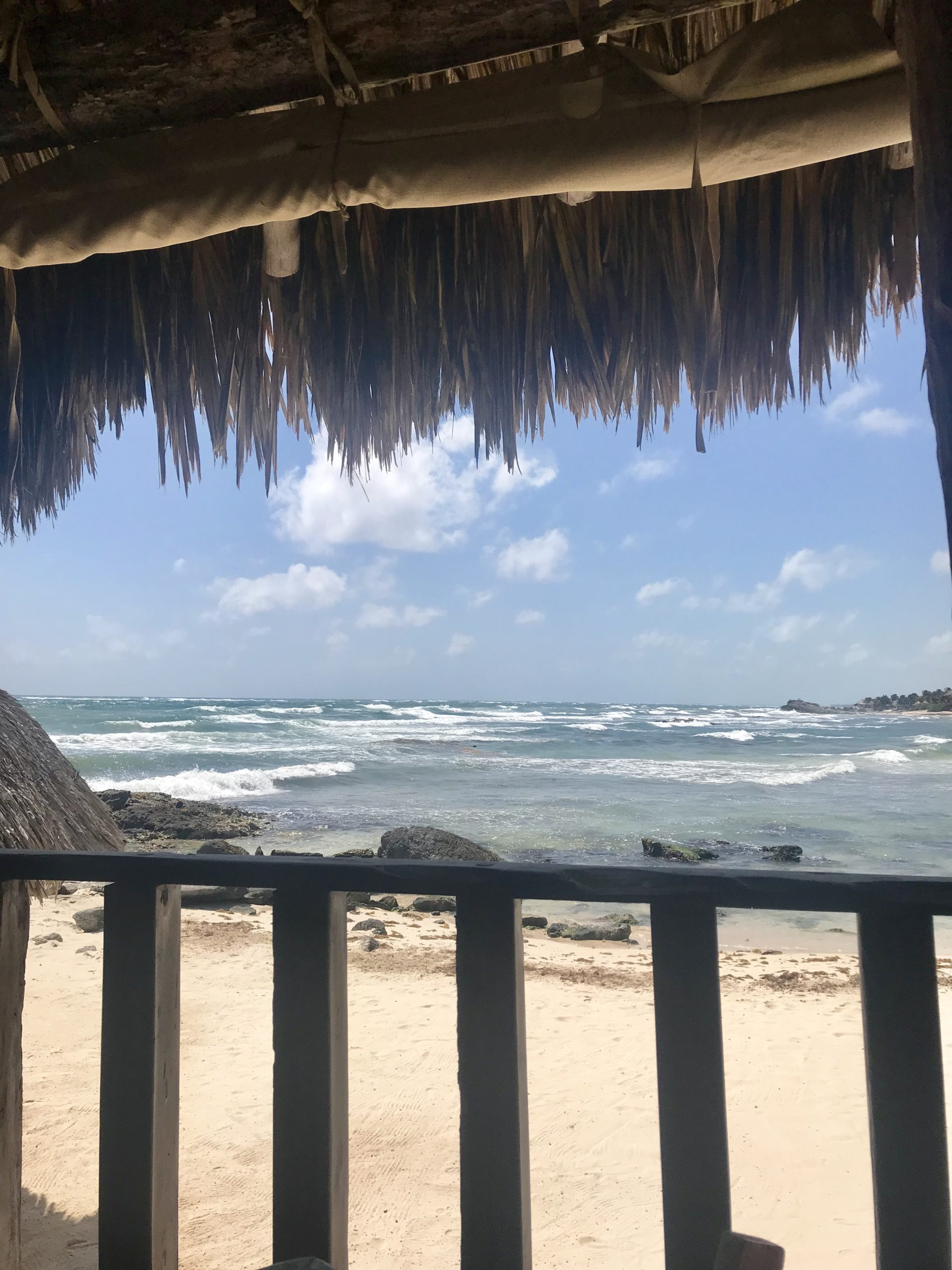 Where to eat in Tulum – Zamas